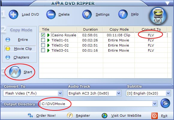start dvd to flv, dvd to flash conversion